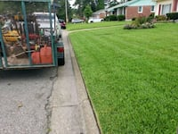 IMoe Lawns Virginia Beach