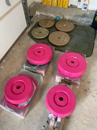 Dead Weight Plates 42lb-7lb weight lifting