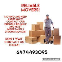 Local moving Toronto