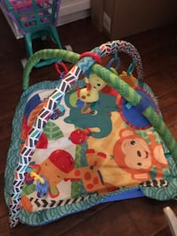 baby's multicolored activity gym St Catharines, L2S 2P6