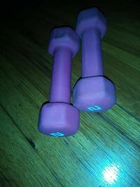 two pink fixed weight dumbbells Detroit, 48238