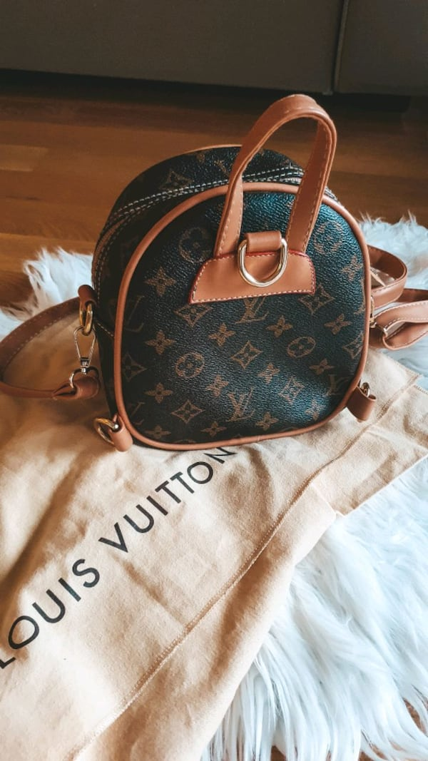 Louis vuitton bag 1