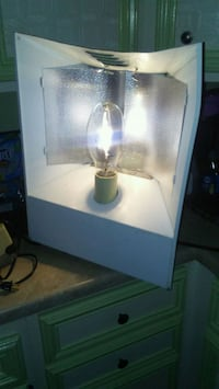 250 watt grow light Waterford Township