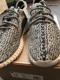 Adidas yeezy 350 turtle dove Paris, 75116