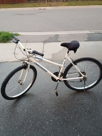 white Patrinder rigid mountain bike