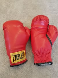 pair of red Everlast boxing gloves
