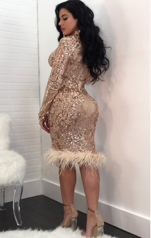 Long Sleeve Sequins Mesh Feather Deep V-Neck Bodycon Dress 1