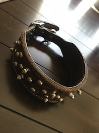 "21"" spikes leather collar  Florence, 76527"