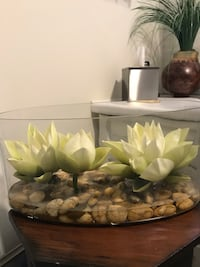 Beautiful faux lotus display Toronto, M5M 2G7