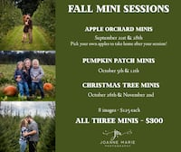 Fall Mini Photo Sessions  Mt Airy