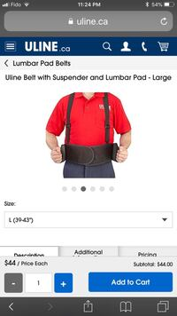 Belt with suspender and Lumbar pad -Large ( 39-43 inches). Toronto, M9W 3H4