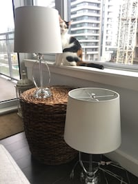 Pair of glass-base table lamps (cat not included) Vancouver, V5Y 0K5