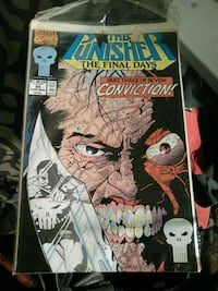 Marvel The Punisher The Final Days comic book