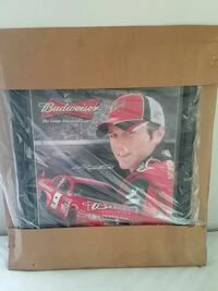 Kasey Kane picture / frame, brand new in the cardb Saginaw, 48603