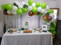 baby shower  Mississauga, L5B 0G4