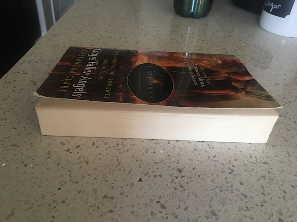 Shadowhunters book 2