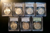 Lot of 8 Morgan Silver Dollars