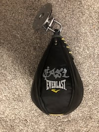 Everlast speedbag  Sunset, 84015