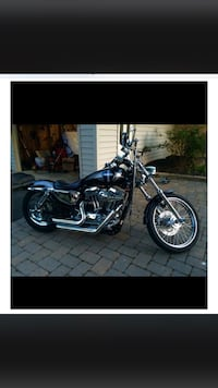 Black and gray cruiser motorcycle 2005  1200 custom sportster Brookeville, 20833
