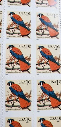 Stamps 1 Sheet of American Kestrel(1999) 1cent Orange, 92868