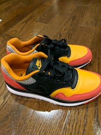 Brand New Nike Air Safari SP19