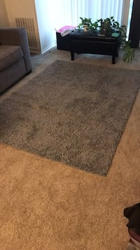 Rug (Everything must go!!) College Park, 20740