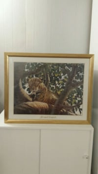 Leopard in a tree framed picture  London, N6H 3T6