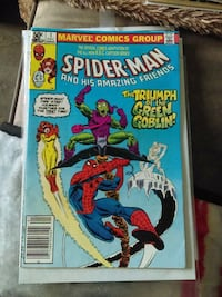 Marvel Comics Group Spider-Man and his Amazing Friends comic book pack Niagara Falls, L2G