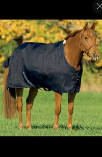 Horse Equipment - New Turnout Sheet! Lincoln, 19960
