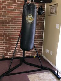 Everlast punching bag, stand and speed bag $200 obo Trotwood, 45426