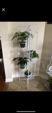 Plants stand