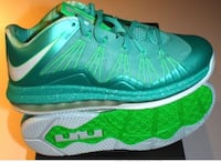 "Lebron 10 low ""Easters"" Windsor, N8X 1K5"
