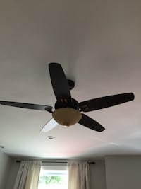 Beautiful fan  for only 35!