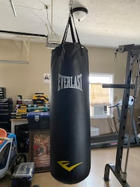 Everlast 70 pound punching bag Falling Waters, 25419