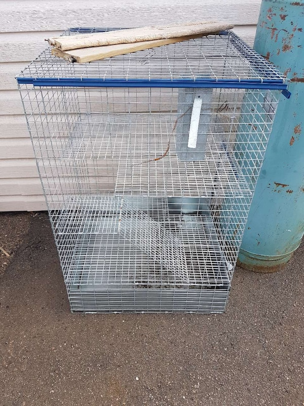 stainless steel and blue pet cage