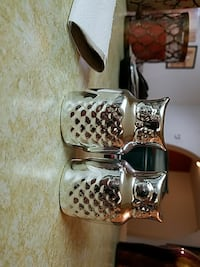 two stainless steel condiment shakers Hudson, 34669