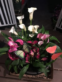 Calla Lilies - it's a fundraising for BC Children's Hospital. Surrey, V3S 9B8