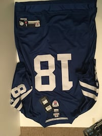 Peyton Manning Indianapolis Colts Reebok Offical NFL Jersey. LRG 534 km