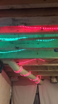 green and red LED string lights Kalamazoo, 49001