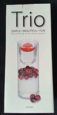 Decorating Vase Kit (brand new) Mississauga, L5J 4B3