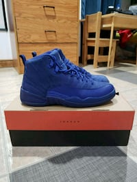 Air Jordan 12 Deep Royal (sz 9.5) 539 km