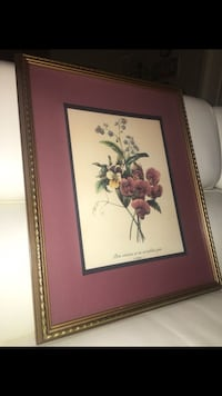 Pierre-Joseph Redouté Floral Watercolor Art Picture with Frame New Iberia, 70563
