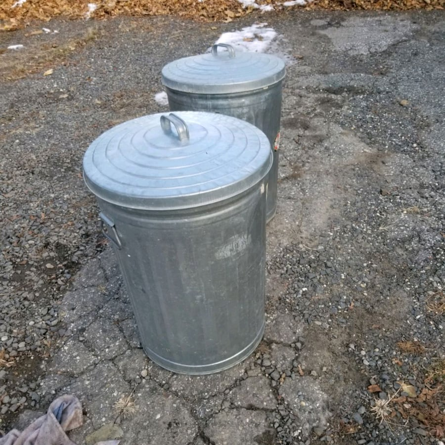 Pair of trash cans  looks like new