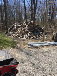 Oak and maple seasoned two year logs $200 per cord. Plus $50 if delivered   Olmsted Twp, 44138