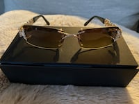 Caviar Sunglasses Champagne Collection Woodbury, 55125