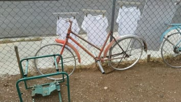 Ross euro frame with rims $75