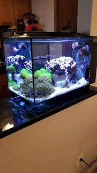 black framed glass fish tank Alexandria, 22315