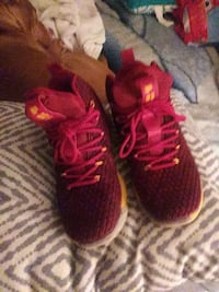 Labrons Shoes