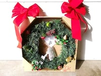 green & red Christmas wreath Sparrows Point, 21219