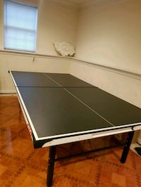 Ping Pong Table w/ Accessories Chantilly, 20152